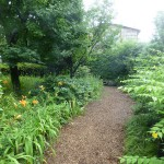 Paths through the garden.