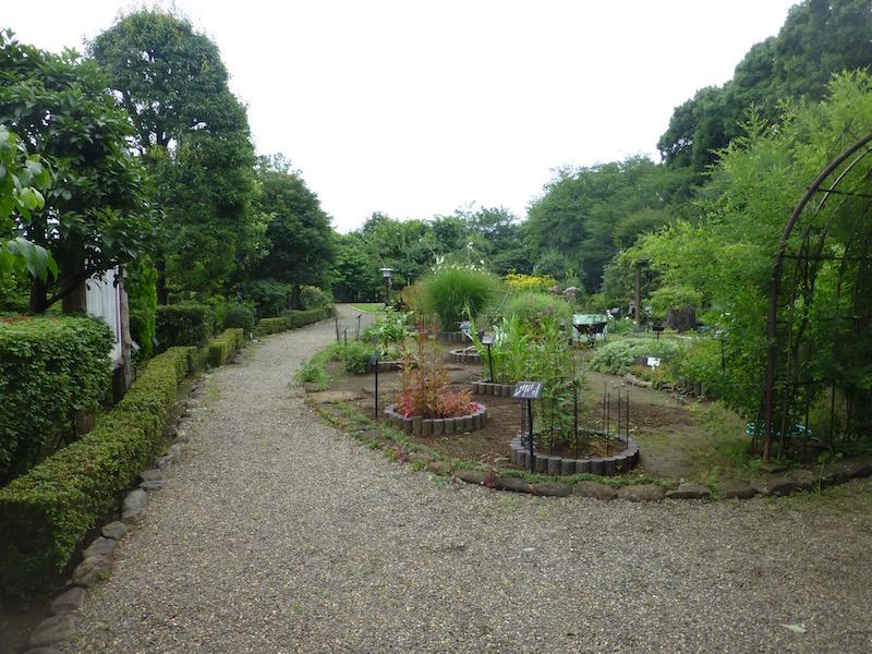 Ichikawa Municipal Manu0027yō Botanical Garden
