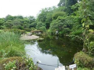 The garden pond.